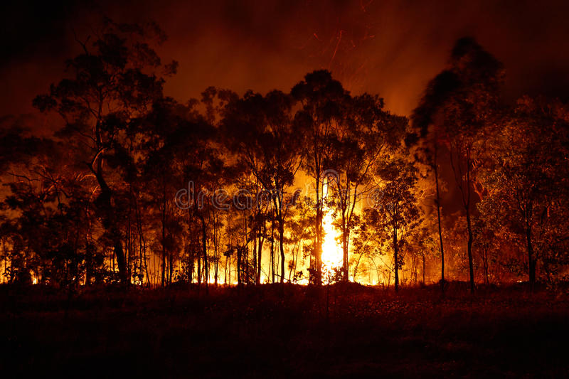 How quickly can I get my Building Permit after bushfire